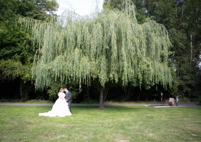 bride and groom face to face in love under a large willow tree